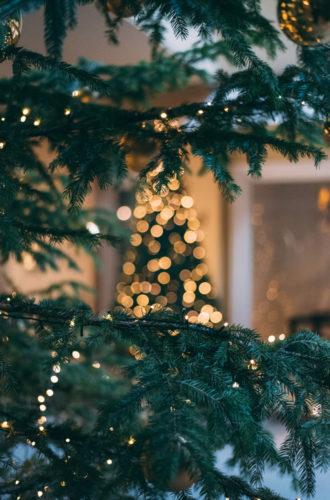 senang-makan-kerst